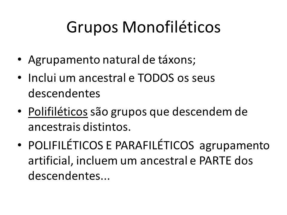 Grupos Monofiléticos Agrupamento natural de táxons;