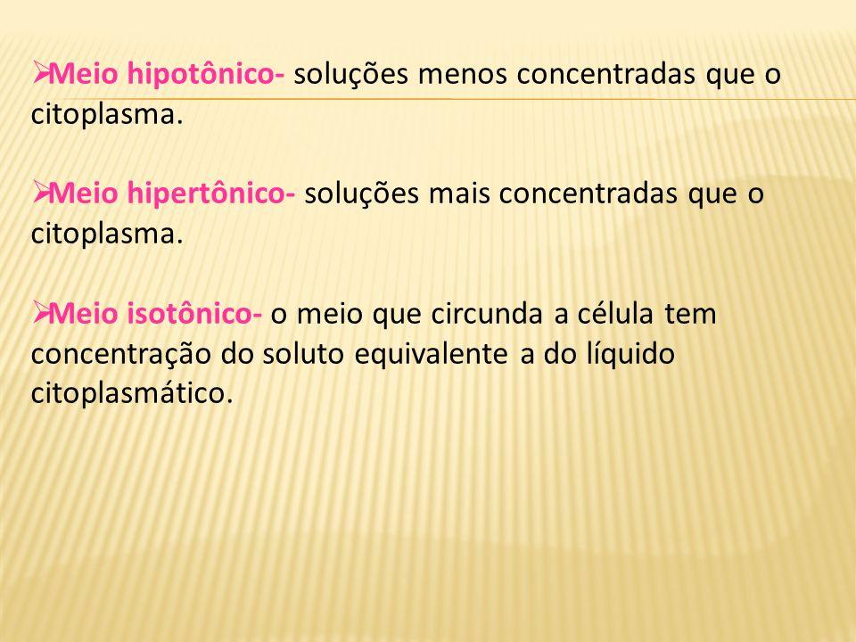 Meio hipotônico- soluções menos concentradas que o citoplasma.