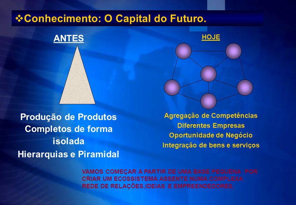 Conhecimento: O Capital do Futuro.