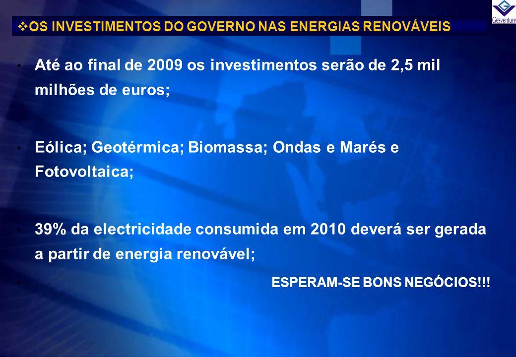 OS INVESTIMENTOS DO GOVERNO NAS ENERGIAS RENOVÁVEIS