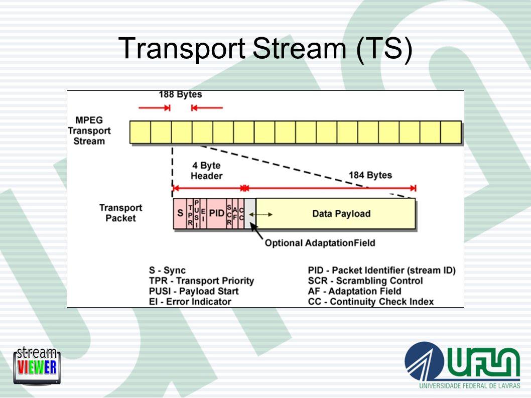 Transport Stream (TS)