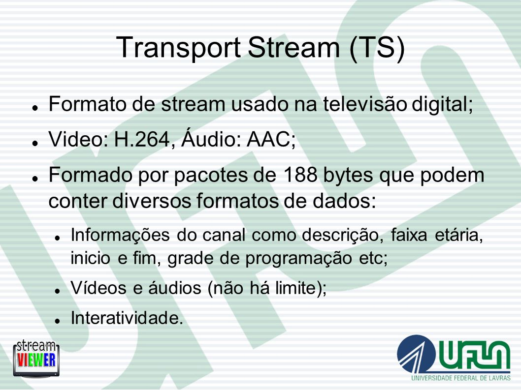 Transport Stream (TS) Formato de stream usado na televisão digital;