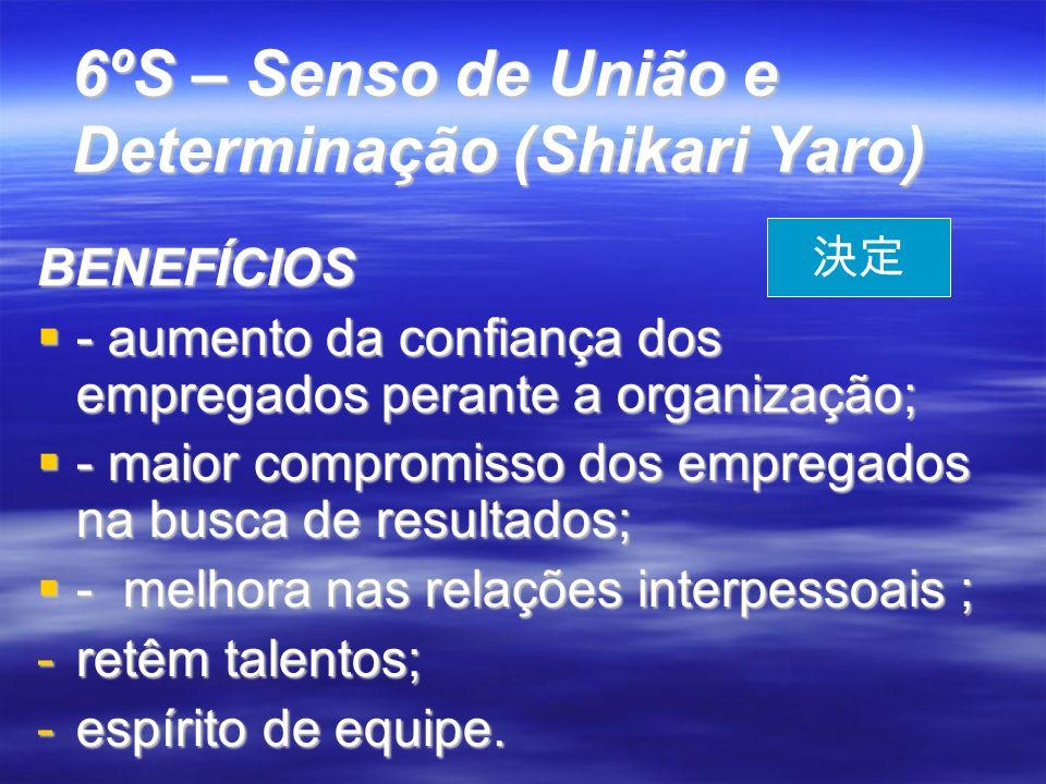 6ºS – Senso de União e Determinação (Shikari Yaro)