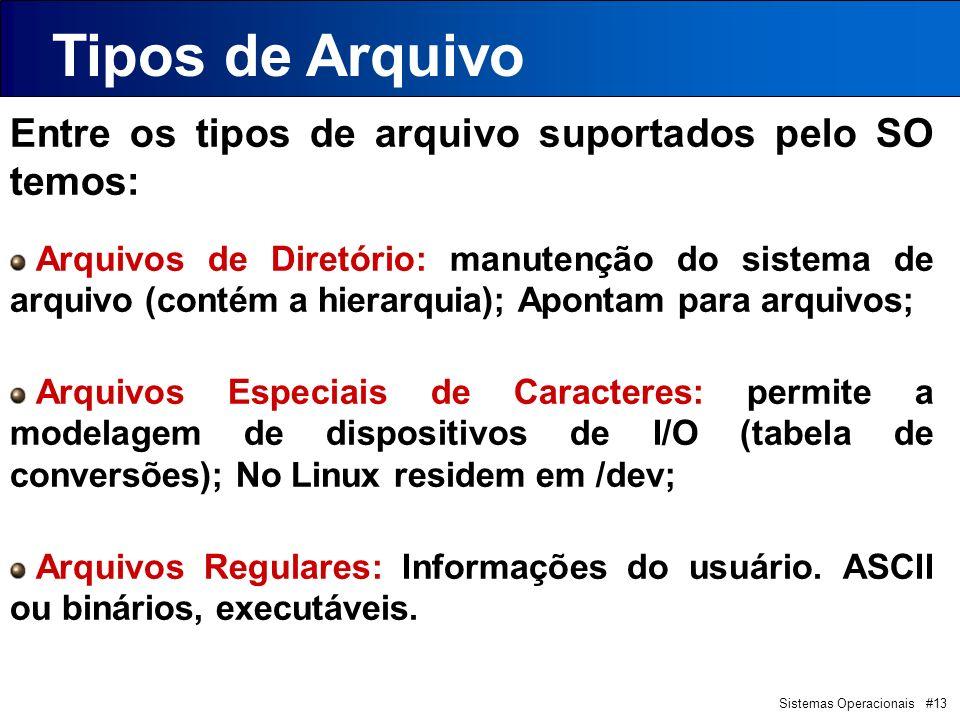 Tipos de Arquivo Entre os tipos de arquivo suportados pelo SO temos: