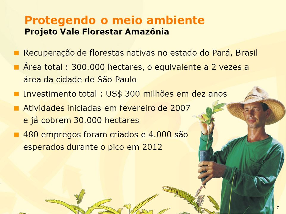 Protegendo o meio ambiente Projeto Vale Florestar Amazônia