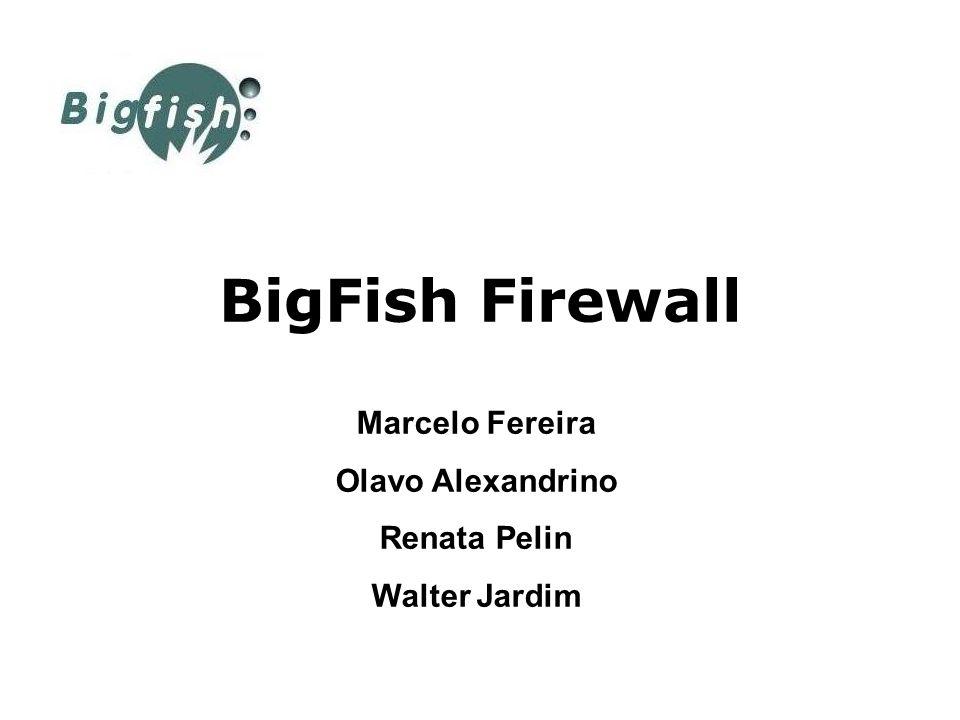 BigFish Firewall Marcelo Fereira Olavo Alexandrino Renata Pelin