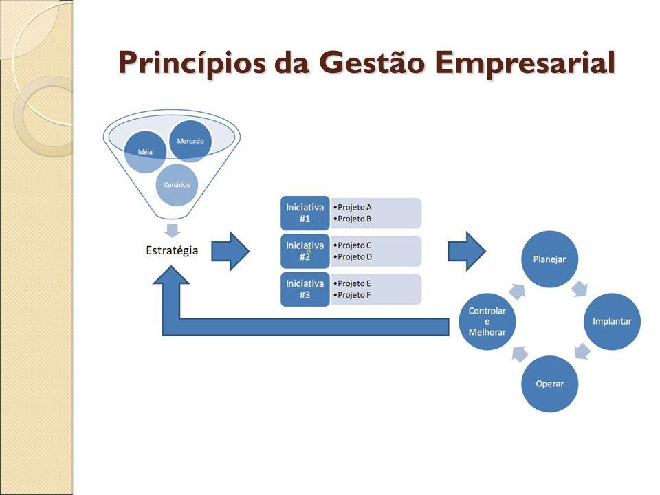 Princípios da Gestão Empresarial