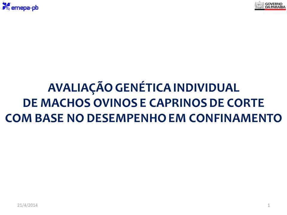 AVALIAÇÃO GENÉTICA INDIVIDUAL DE MACHOS OVINOS E CAPRINOS DE CORTE COM BASE NO DESEMPENHO EM CONFINAMENTO