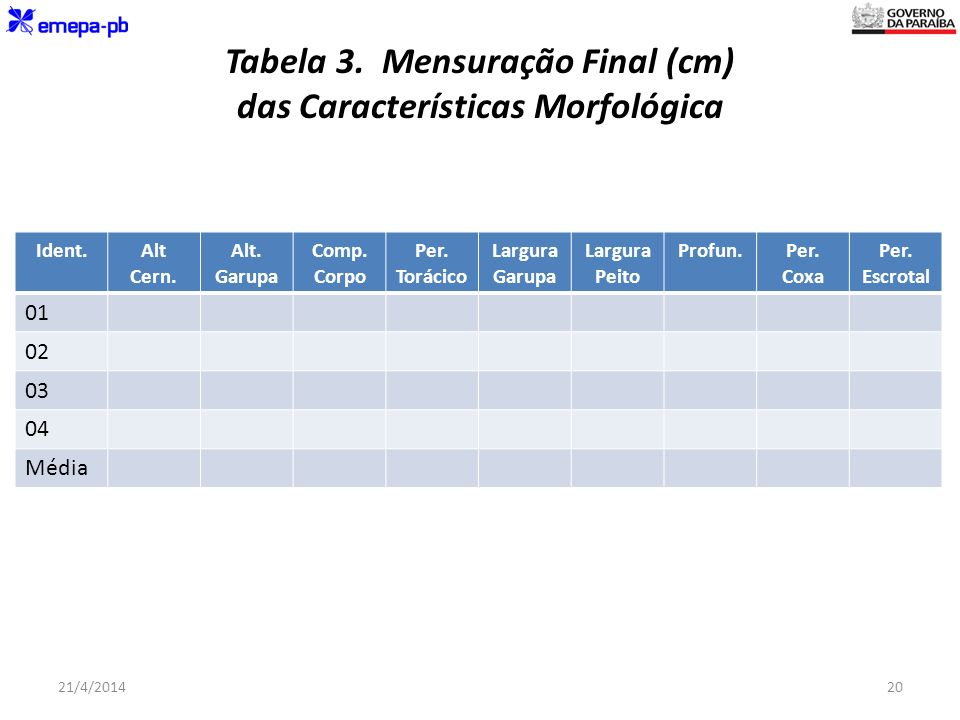Tabela 3. Mensuração Final (cm) das Características Morfológica