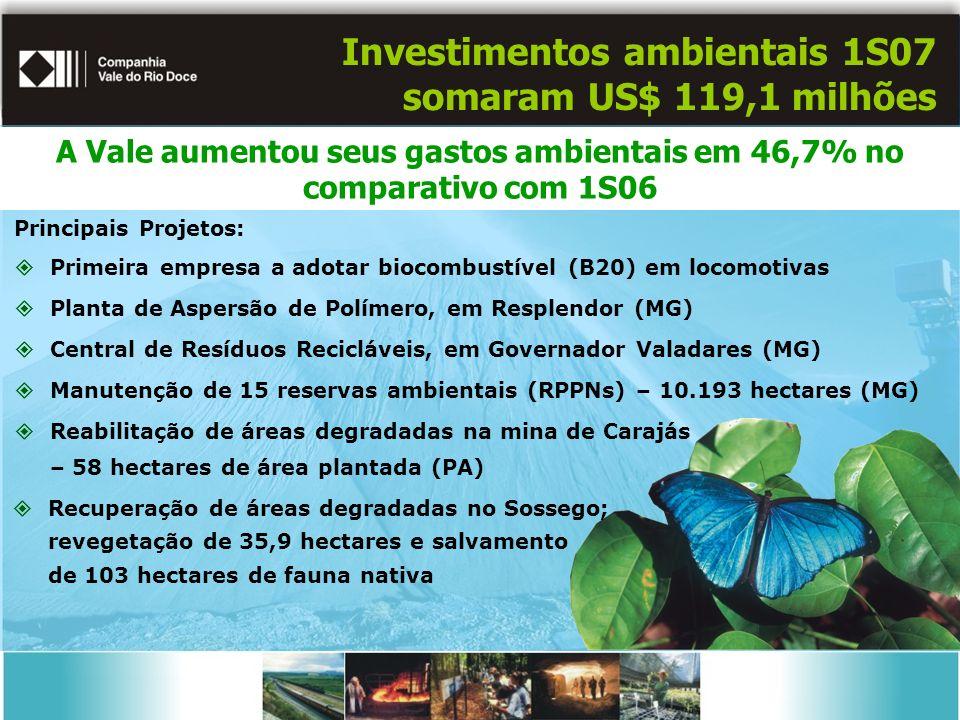 Investimentos ambientais 1S07 somaram US$ 119,1 milhões