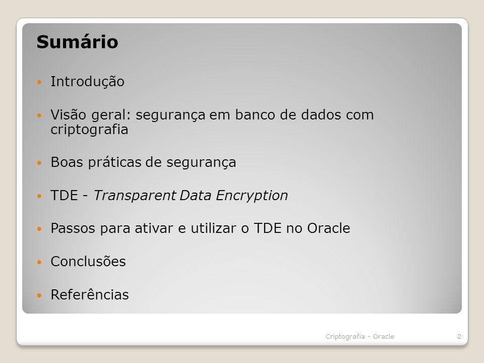 Sumário Introdução. Visão geral: segurança em banco de dados com criptografia. Boas práticas de segurança.
