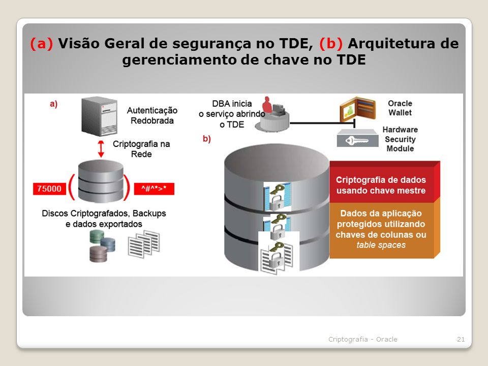 (a) Visão Geral de segurança no TDE, (b) Arquitetura de gerenciamento de chave no TDE