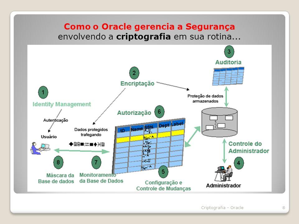 Como o Oracle gerencia a Segurança envolvendo a criptografia em sua rotina...