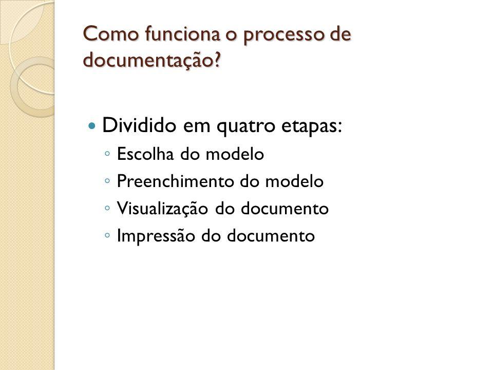 Como funciona o processo de documentação