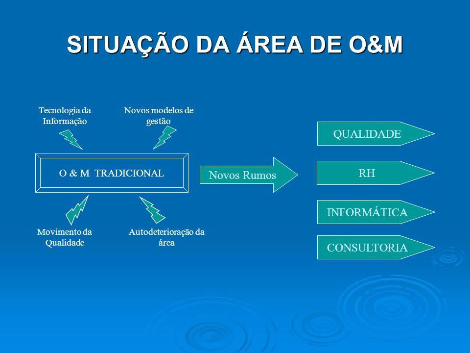 SITUAÇÃO DA ÁREA DE O&M QUALIDADE Novos Rumos RH INFORMÁTICA