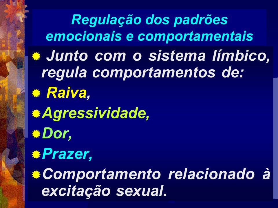 Regulação dos padrões emocionais e comportamentais