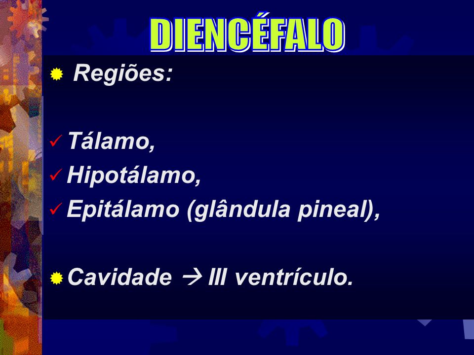DIENCÉFALO Regiões: Tálamo, Hipotálamo, Epitálamo (glândula pineal), Cavidade  III ventrículo.