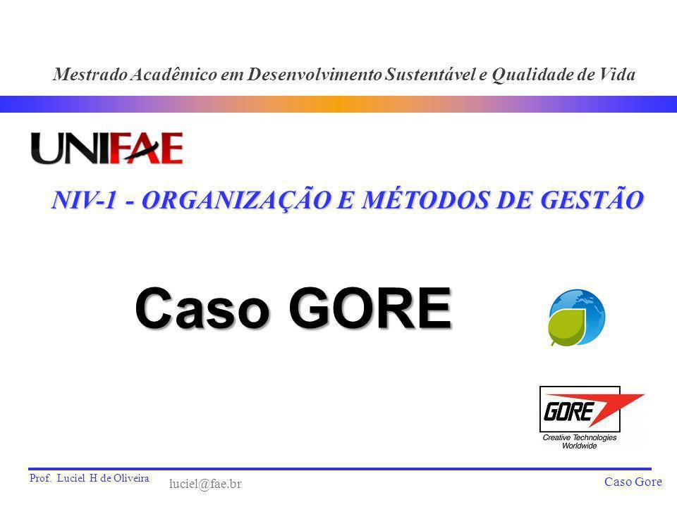 Caso GORE NIV-1 - ORGANIZAÇÃO E MÉTODOS DE GESTÃO