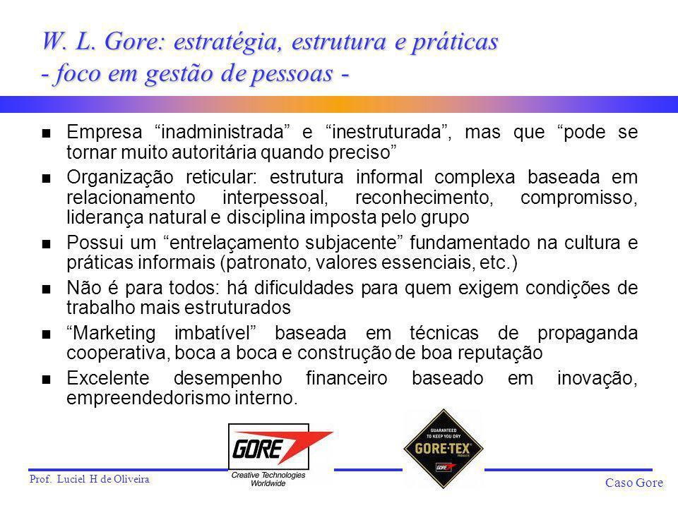 W. L. Gore: estratégia, estrutura e práticas - foco em gestão de pessoas -