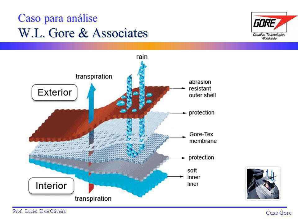 Caso para análise W.L. Gore & Associates