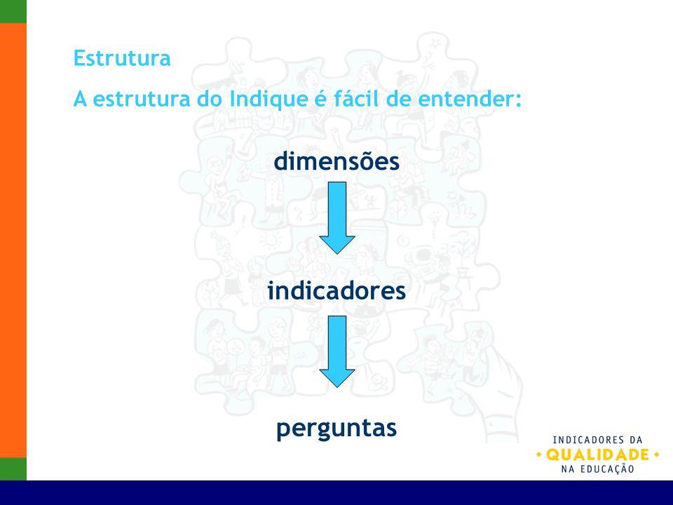 dimensões indicadores perguntas