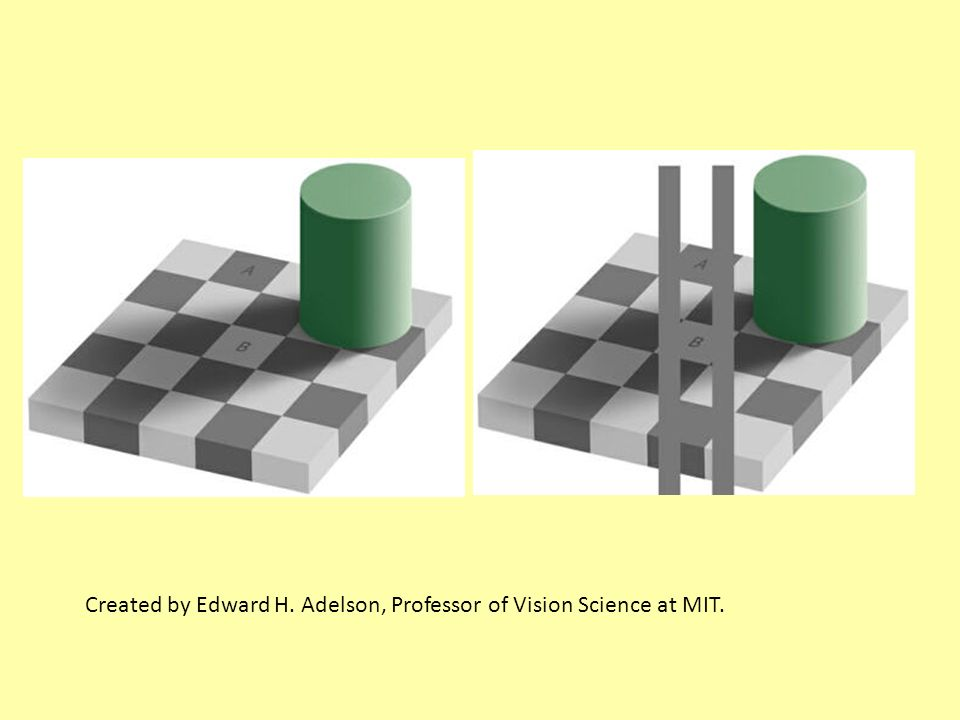 Created by Edward H. Adelson, Professor of Vision Science at MIT.
