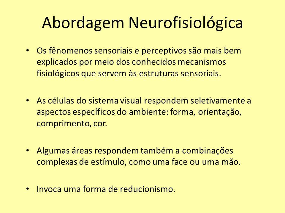 Abordagem Neurofisiológica