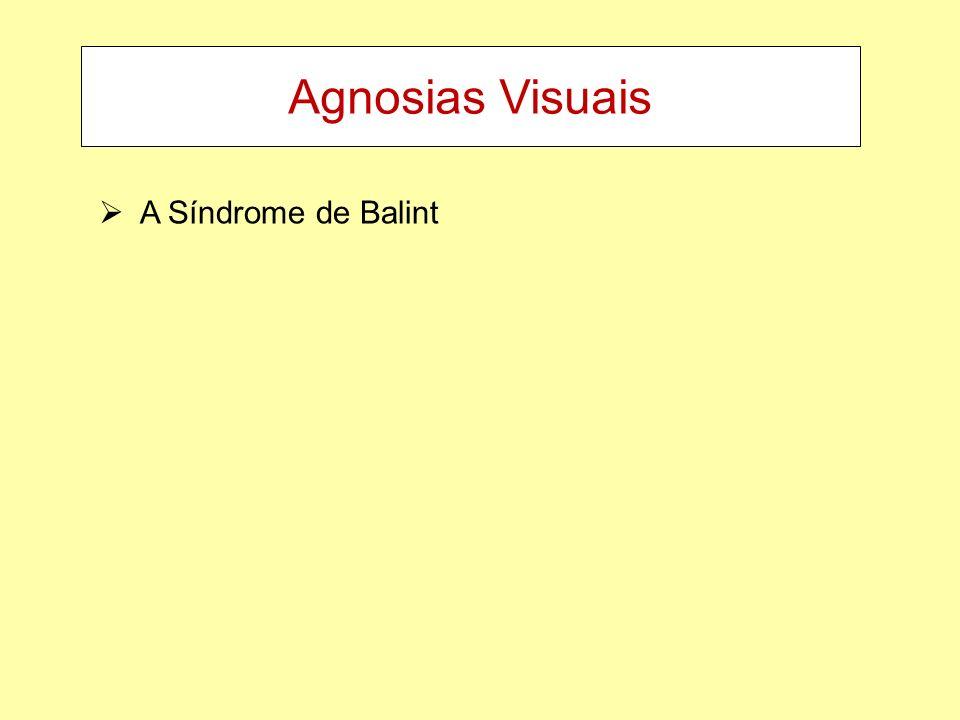 Agnosias Visuais A Síndrome de Balint