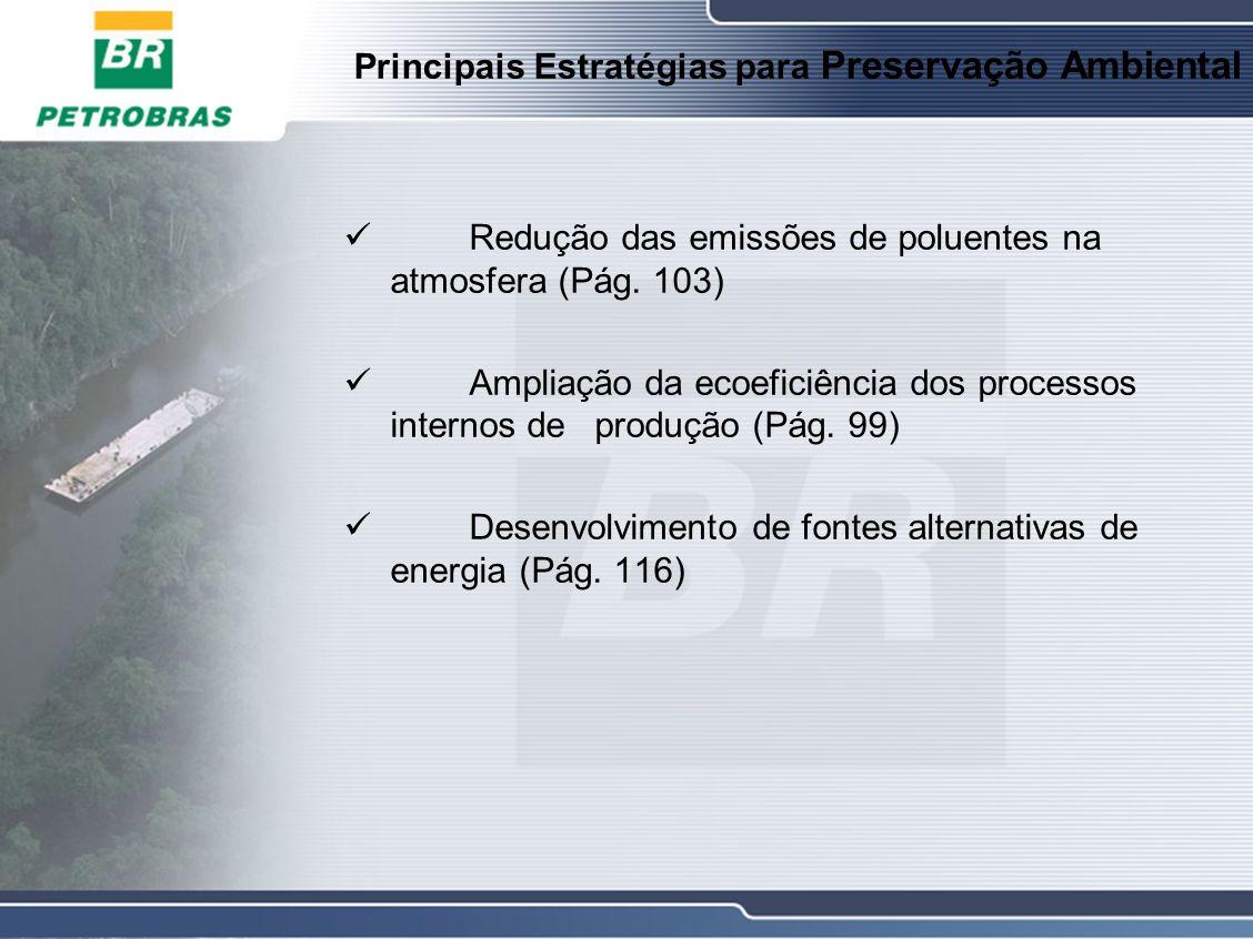 Principais Estratégias para Preservação Ambiental