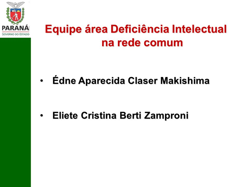 Equipe área Deficiência Intelectual na rede comum