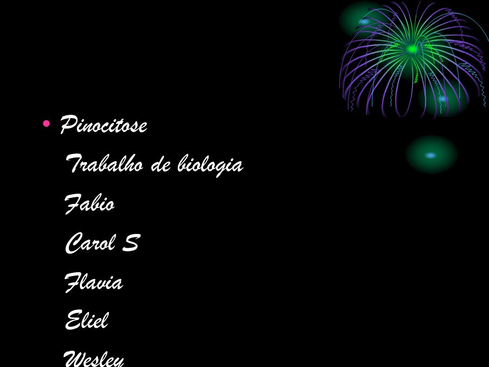 Pinocitose Trabalho de biologia Fabio Carol S Flavia Eliel Wesley