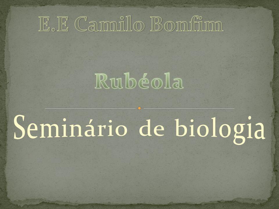 E.E Camilo Bonfim Rubéola