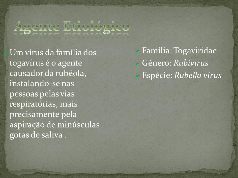 Agente Etiológico Família: Togaviridae