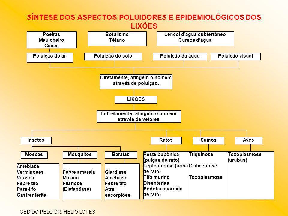 SÍNTESE DOS ASPECTOS POLUIDORES E EPIDEMIOLÓGICOS DOS LIXÕES