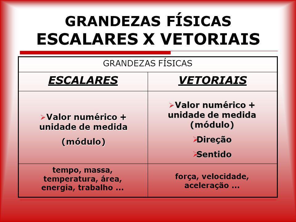 GRANDEZAS FÍSICAS ESCALARES X VETORIAIS