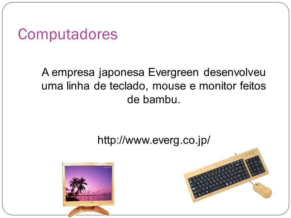 Computadores A empresa japonesa Evergreen desenvolveu uma linha de teclado, mouse e monitor feitos de bambu.