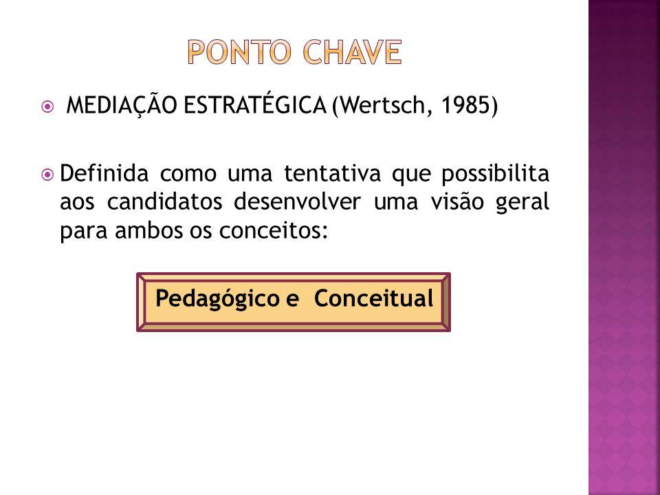 Pedagógico e Conceitual