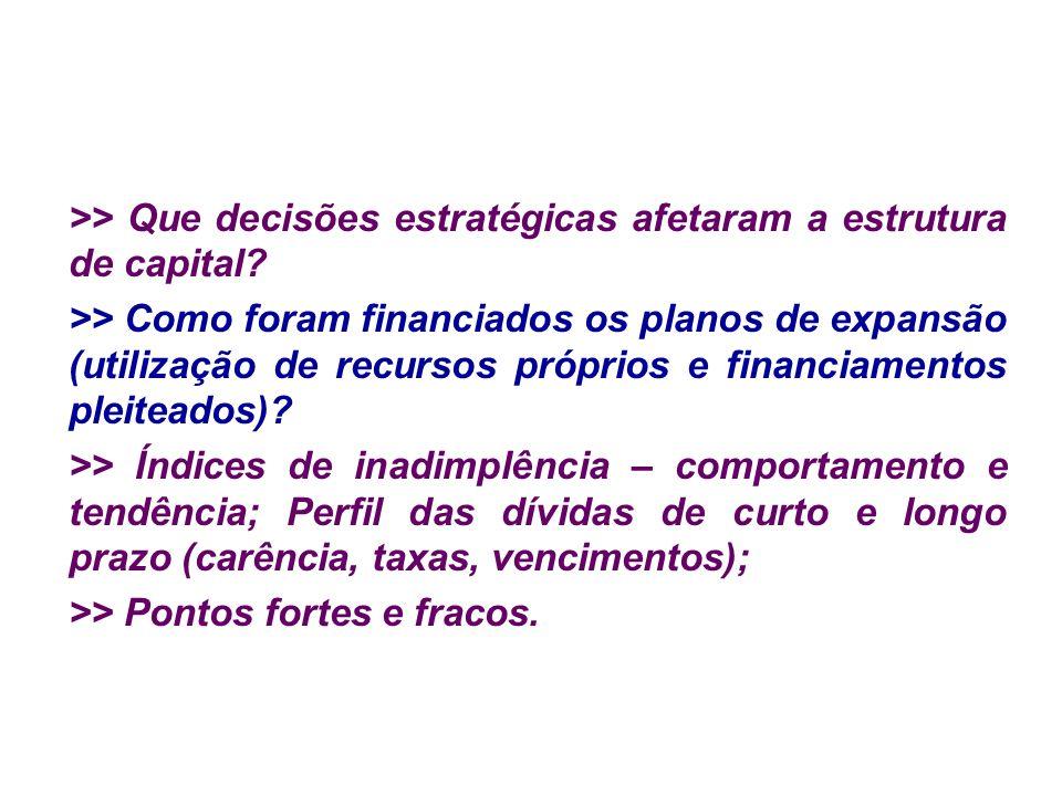 >> Que decisões estratégicas afetaram a estrutura de capital
