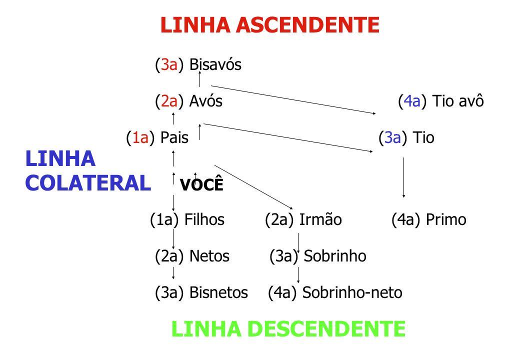 LINHA ASCENDENTE LINHA COLATERAL VOCÊ (3a) Bisavós