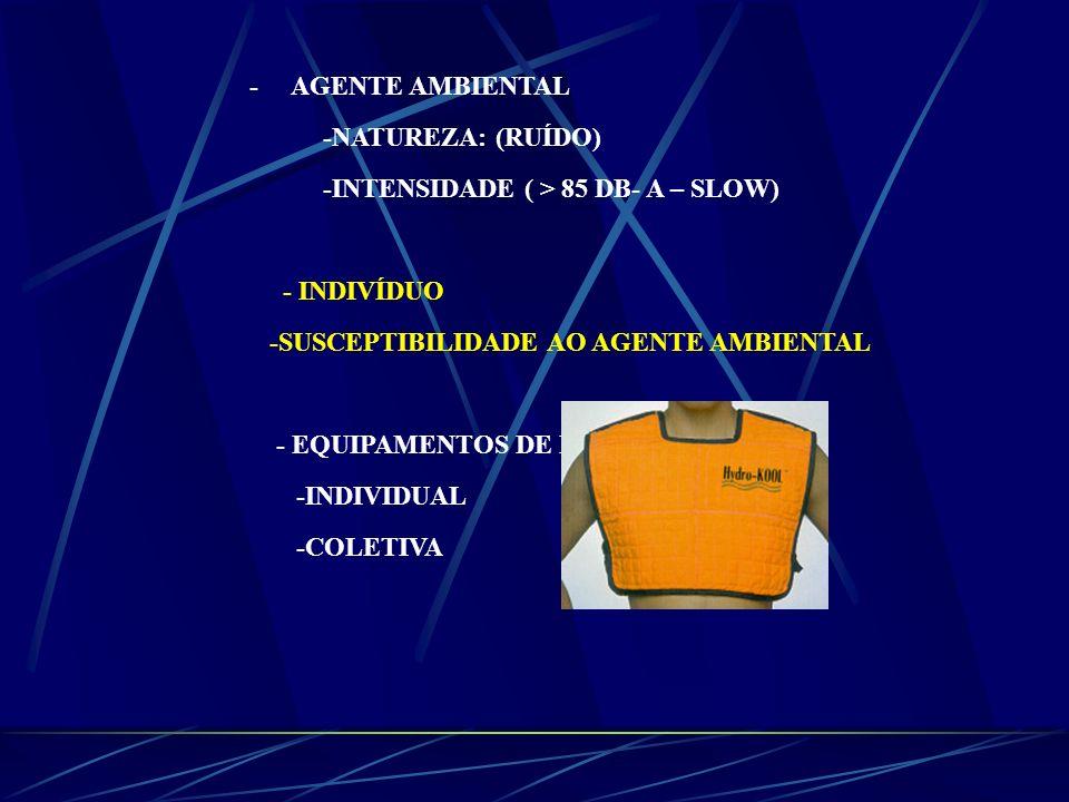 - AGENTE AMBIENTAL -NATUREZA: (RUÍDO) -INTENSIDADE ( > 85 DB- A – SLOW) - INDIVÍDUO. -SUSCEPTIBILIDADE AO AGENTE AMBIENTAL.
