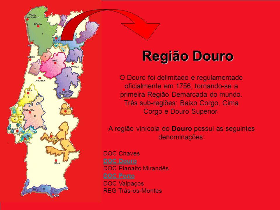 Região Douro O Douro foi delimitado e regulamentado oficialmente em 1756, tornando-se a primeira Região Demarcada do mundo.