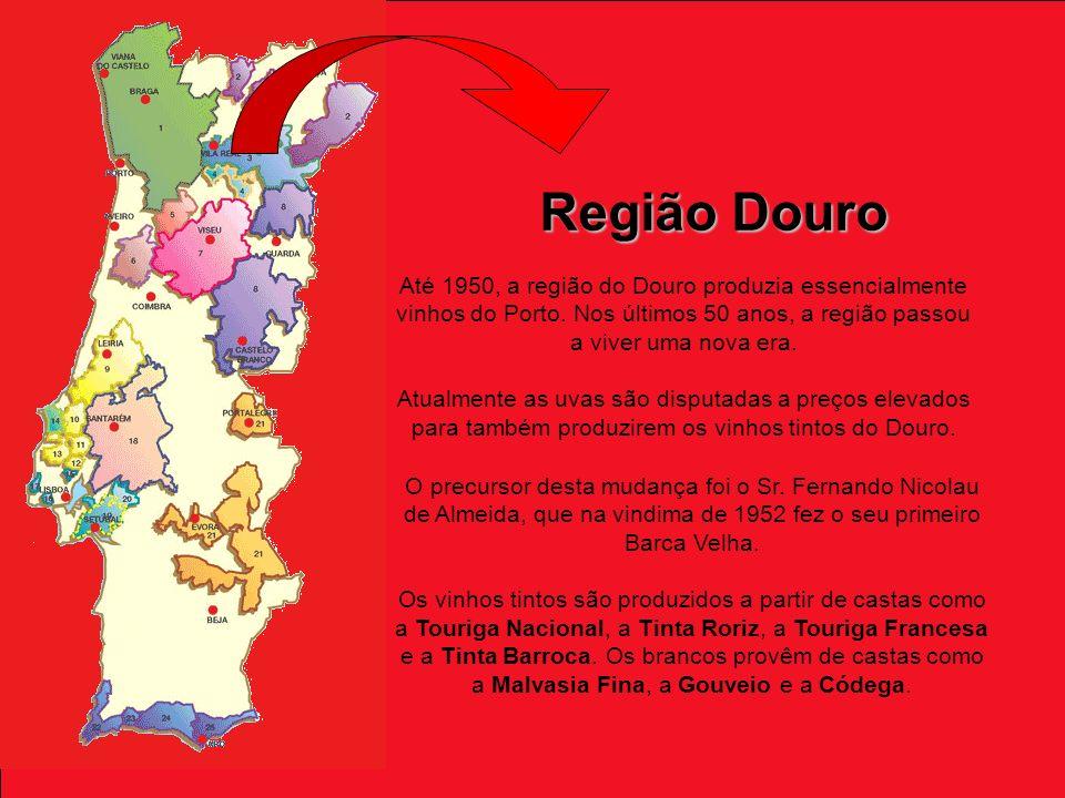 Região Douro Até 1950, a região do Douro produzia essencialmente vinhos do Porto. Nos últimos 50 anos, a região passou a viver uma nova era.