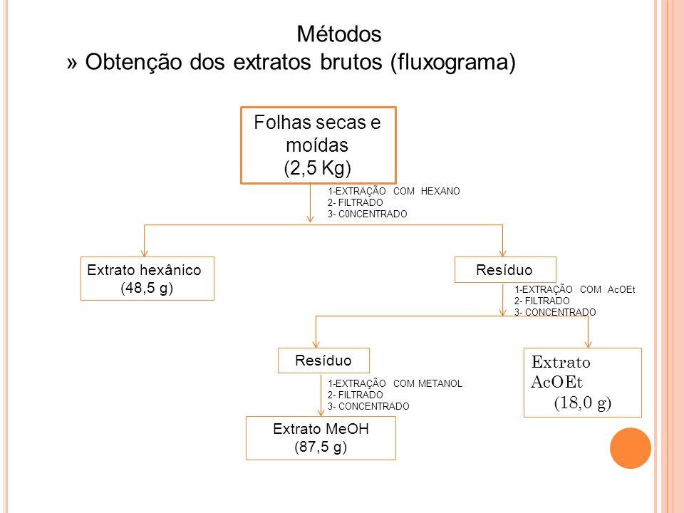 » Obtenção dos extratos brutos (fluxograma)