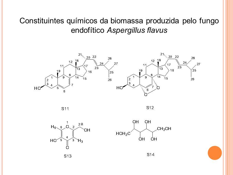 Constituintes químicos da biomassa produzida pelo fungo endofítico Aspergillus flavus
