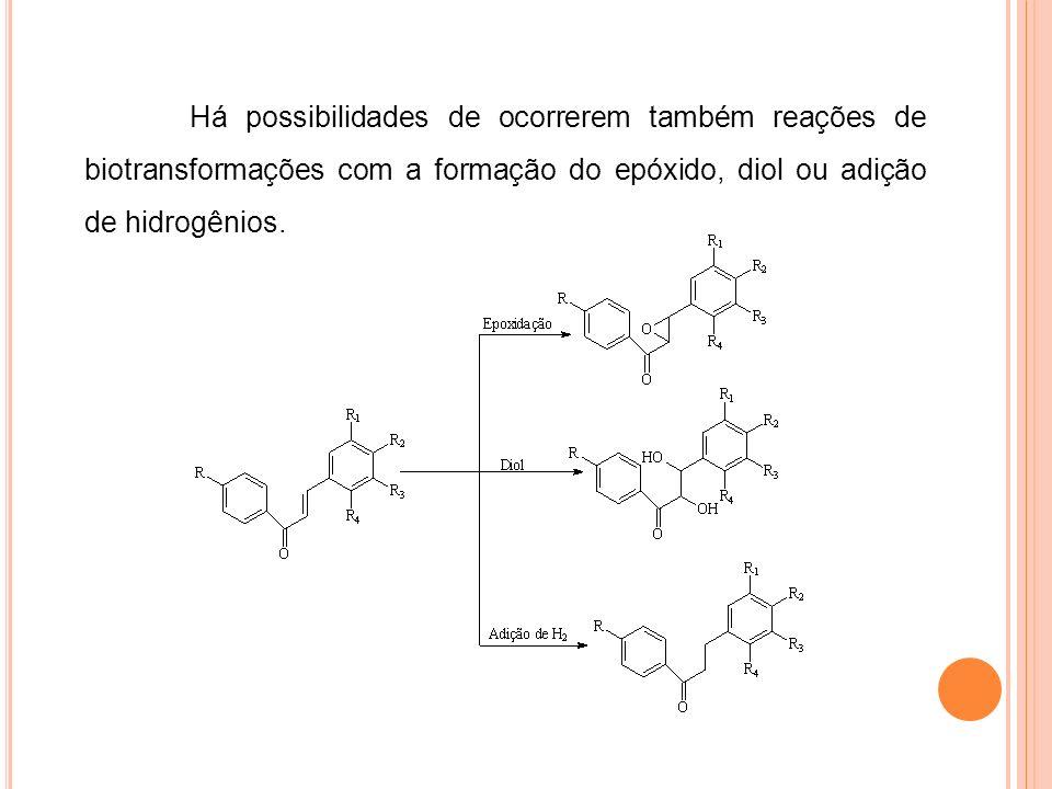 Há possibilidades de ocorrerem também reações de biotransformações com a formação do epóxido, diol ou adição de hidrogênios.