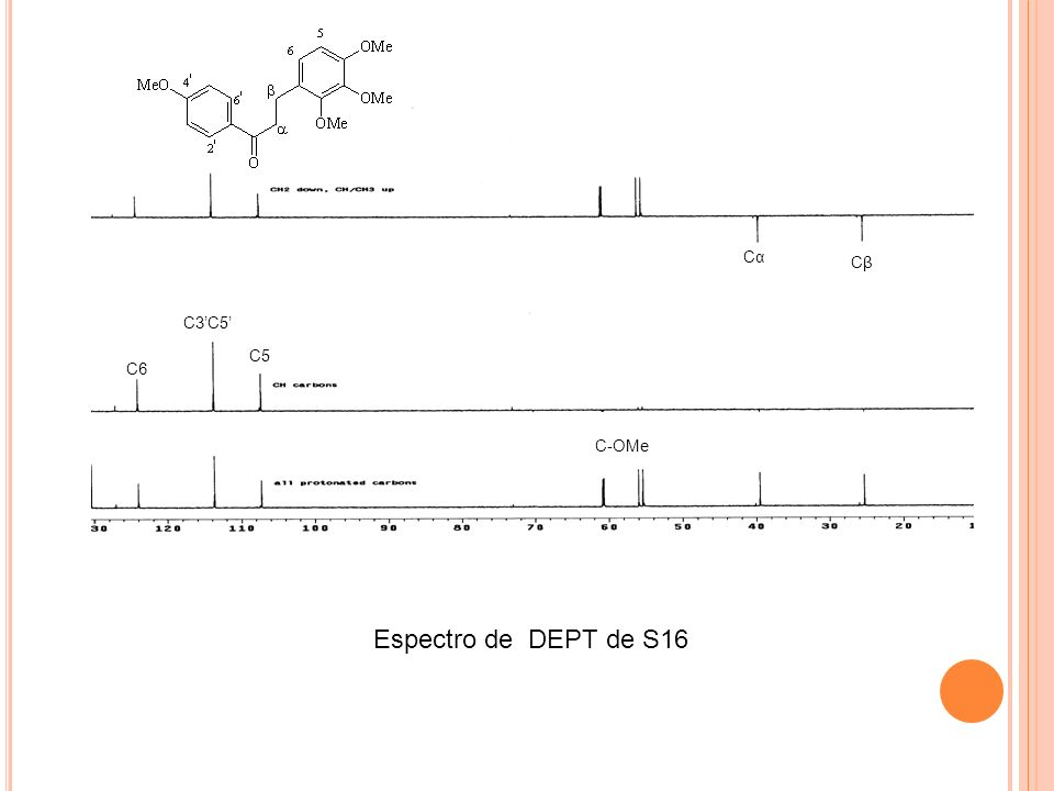 Cα Cβ C3'C5' C5 C6 C-OMe Espectro de DEPT de S16
