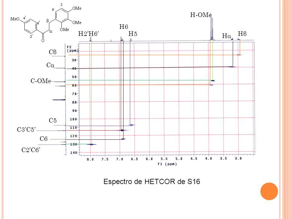 Espectro de HETCOR de S16 H-OMe H6 H2'H6' H5 Hβ Hα Cβ Cα C-OMe C5