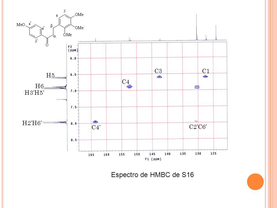 C3 C1 H5 C4 H6 H3'H5' H2'H6' C4' C2'C6' Espectro de HMBC de S16