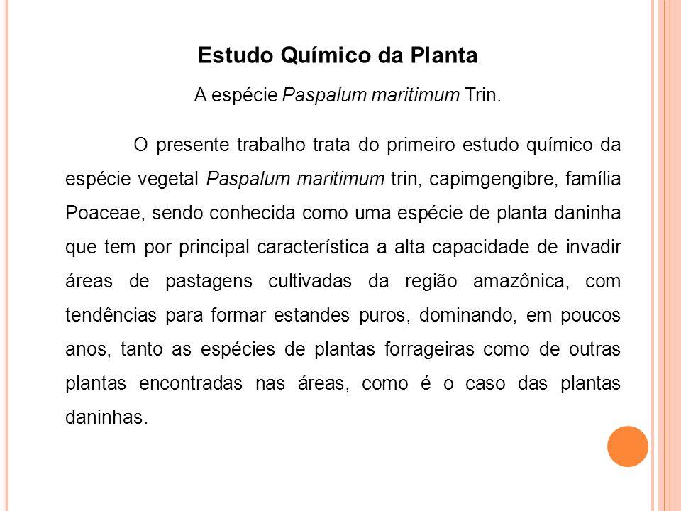 Estudo Químico da Planta