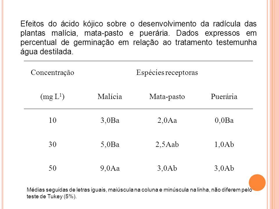 Efeitos do ácido kójico sobre o desenvolvimento da radícula das plantas malícia, mata-pasto e puerária. Dados expressos em percentual de germinação em relação ao tratamento testemunha água destilada.